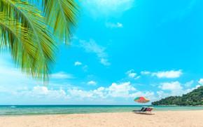 Picture sand, sea, wave, beach, summer, the sky, palm trees, shore, chaise, summer, beach, sea, seascape, …