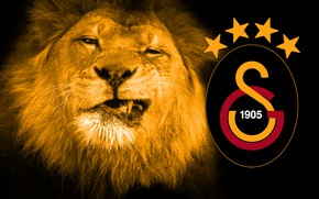 Picture wallpaper, sport, logo, lion, football, Galatasaray