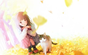 Picture the wind, girl, socks, falling leaves, squat, tabby cat, autumn leaves, Sunny day, red shoes, …