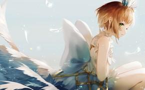 Picture girl, angel, sitting, Card Captor Sakura, Sakura - collector cards