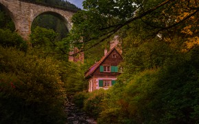 Picture roof, greens, autumn, leaves, trees, branches, bridge, comfort, house, thickets, branch, foliage, Windows, the evening, …