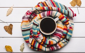 Picture autumn, leaves, background, tree, coffee, colorful, scarf, Cup, wood, background, autumn, leaves, cup, coffee, maple