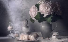 Picture bouquet, still life, hydrangea, marshmallows