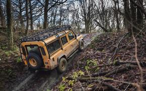 Picture SUV, Land Rover, slippery, the rise, Defender, V8, 5.0 L., 2021, Works V8 Trophy, 405 …