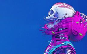 Picture Color, Skull, Style, Leather, Bones, Fantasy, Style, Color, Sake, Fiction, Fiction, Skeleton, Illustration, Skin, Sci-Fi, …