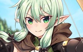 Picture girl, elf, Goblin Slayer, The killer of goblins