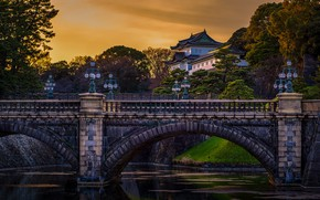 Picture trees, landscape, bridge, river, the building, the evening, Japan, Tokyo, lights, Palace