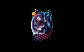 Picture Minimalism, Tiger, Cat, Style, Background, Face, Predator, Art, Art, Tiger, Predator, Style, Neon, Cat, Background, …