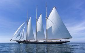 Picture the sky, ship, sailboat, horizon, white sails