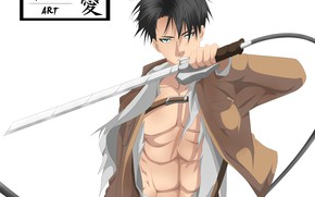 Picture guy, Attack Of The Titans, Shingeki No Kyojin, corporal Levi, Levi Ackerman