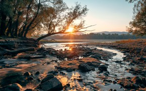 Picture nature, river, morning