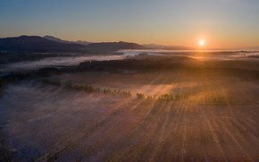 Picture field, fog, morning