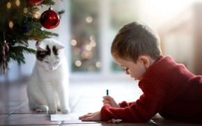 Picture cat, boy, a letter to Santa Claus