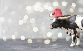 Picture lights, holiday, black and white, toy, cow, Christmas, New year, horns, beads, profile, grey background, …