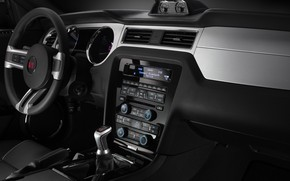 Picture Mustang, Ford, Saleen, salon, 2009, dashboard, S281