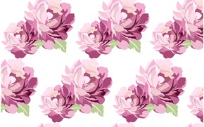 Picture white, flowers, background, texture, Purple, flowers, background, pattern, Leaves
