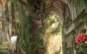 Picture flowers, castle, ruins, corridors
