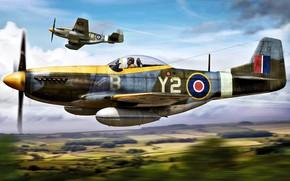 Picture Royal Air Force, P-51K, external fuel tank, 6x12.7-mm machine guns, Mustang Mk.IVA