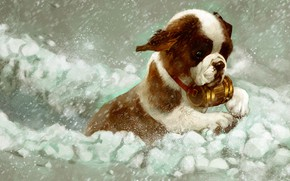 Picture winter, snow, St. Bernard, puppy