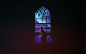 Picture Minimalism, Stars, Cat, Space, Cat, Window, Background, Art