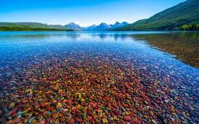 Picture pebbles, lake, stones, shore, pond