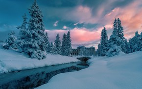 Picture Water, Winter, River, Snow, Morning, Spruce forest