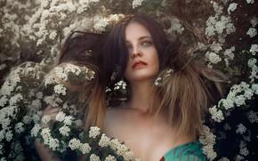 Picture look, girl, branches, face, hair, portrait, neckline, flowering, flowers, hawthorn, Alexander Drobkov-Light, Eva Lapenko