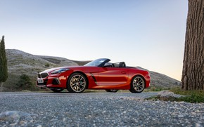 Picture red, BMW, Roadster, side view, BMW Z4, M40i, Z4, 2019, UK version, G29