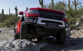 Picture red, stones, Chevrolet, bumper, pickup, Colorado, 2019, ZR2 Bison