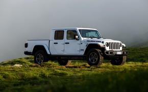Picture white, grass, fog, SUV, haze, pickup, Gladiator, 4x4, Jeep, Rubicon, 2019