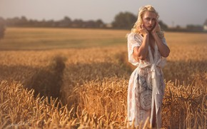 Picture field, look, girl, pose, negligee, ears, Jack Russell, Aurora District