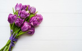 Picture flowers, table, bouquet, purple, tulips, buds, Olena Rudo
