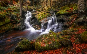 Picture autumn, forest, leaves, trees, stones, shore, foliage, bright, waterfall, moss, stream, green, cascade, pond, boulders, …