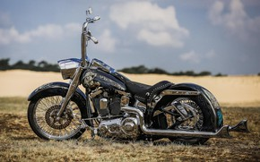 Picture Harley Davidson, Heavy Rain, Harley-Davidson, Custom, Softail, Motorbike, Motorcycle, Thunderbike, By Thunderbike, THE GRINGO