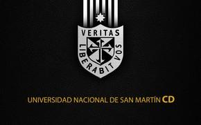 Picture wallpaper, sport, logo, football, CD Universidad De San Martín De Porres