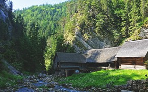 Picture forest, trees, rocks, cottage, stream, Slovakia, moutains