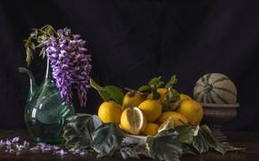Wallpaper lemons, Wisteria, melon