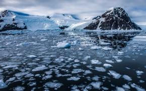 Picture ice, winter, snow, mountains, ice, glacier, ice, drift, pond, snow