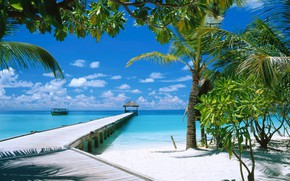 Picture beach, bridge, palm trees, the ocean, boats, pier, The Maldives
