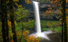 Picture autumn, forest, leaves, trees, branches, rock, Park, stones, waterfall, USA, the bushes, Oregon, Silver Falls …