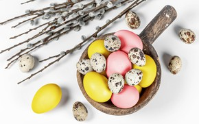 Picture branches, eggs, Easter, white background, Verba, eggs