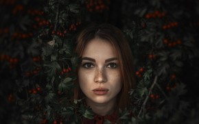 Picture leaves, girl, face, portrait, red, Alexander Tishkevich