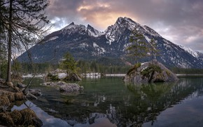 Picture forest, trees, landscape, mountains, nature, stones, Germany, Bayern, Alps, Hintersee, Hintersee