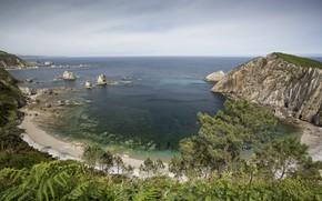 Picture landscape, nature, coast, Bay