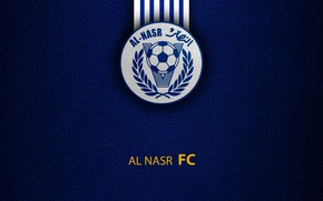 Picture wallpaper, sport, logo, football, Al-Nasr Dubai SC