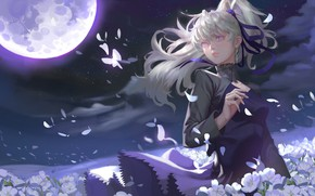 Picture girl, flowers, night, the wind, the moon, petals, Yin, Yin, Darker Than Black