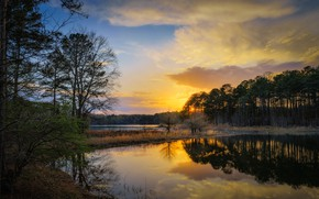 Picture clouds, sunset, lake, reflection, shore, pine, pond