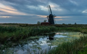 Picture field, summer, the sky, grass, pond, overcast, shore, glade, swamp, the evening, pond, windmill