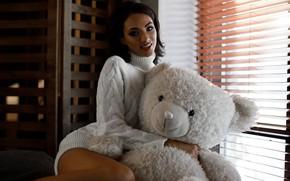 Picture look, smile, toy, Girl, bear, brunette, window, sweater, Alexander Sasin, Ales Vislocky
