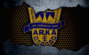 Picture wallpaper, sport, logo, football, ARKA Gdynia